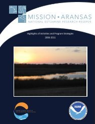 Highlights of Activities and Program Strategies 2006-2011 - Mission ...