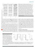 The tempotron: a neuron that learns spike timing–based ... - MIT - Page 4