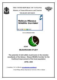 The potential of wild edible mushrooms in the miombo woodlands of ...