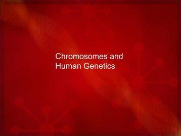 Chromosomes and Human Genetics.pdf