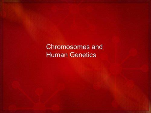 Chromosomes and Human Genetics pdf
