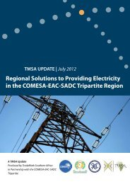 Regional Solutions to Providing Electricity in the Tripartite Region