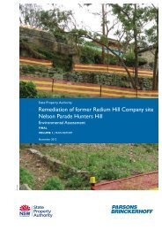 Remediation of former Radium Hill Company site Nelson ... - Land