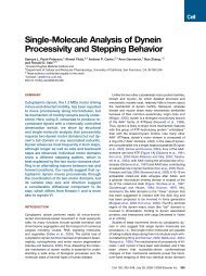 Single-Molecule Analysis of Dynein Processivity and Stepping ...