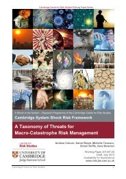 A Taxonomy of Threats for Macro-Catastrophe Risk Management