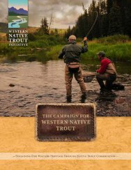 WNTI Campaign for Western Native Trout Brochure - National Fish ...