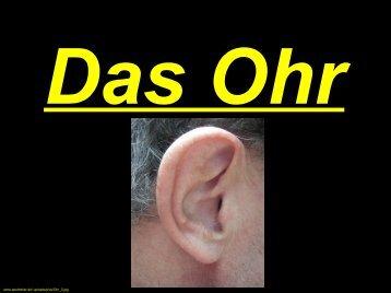 Sinnesorgan Ohr - gm-grassau.de