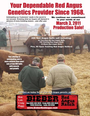 View Complete PDF Catalog (very large file) - Bieber Red Angus ...