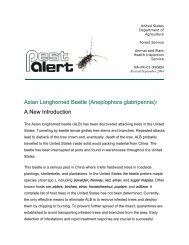 Asian Longhorned Beetle (Anoplophora glabripennis): A New ...