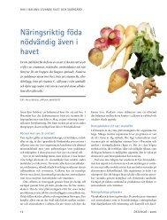 Näringsriktig föda nödvändig även i havet - Havet.nu