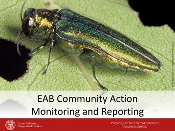 EAB Community Action and Monitoring Presentation - New York ...