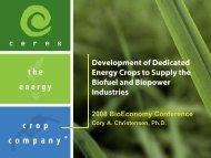 Cory Christensen - Bioeconomy Conference 2009
