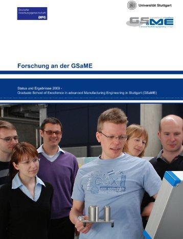 Forschung an der GSaME - Status und Ergebnisse 2009