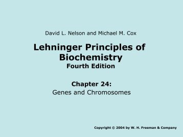 Brochure For Lehninger Principles Of Biochemistry Sixth Palgrave