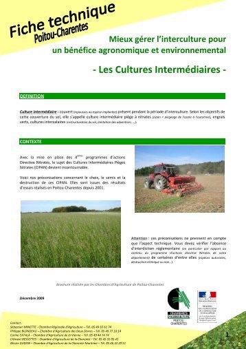 Caract ristiques des principales cultures interm diaires - Chambre agriculture charente maritime ...