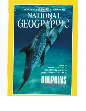 Download This Article - Wild Dolphin Project