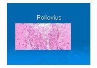 Poliovius