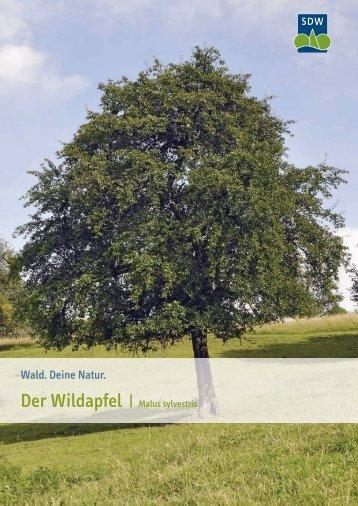 Wildapfel - Schutzgemeinschaft Deutscher Wald