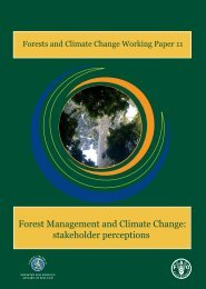 Forest management and climate change: stakeholder ... - FAO
