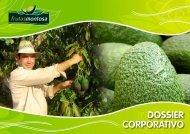 DOSSIER CORPORATIVO - Avocados.tv