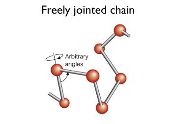 Freely jointed chain