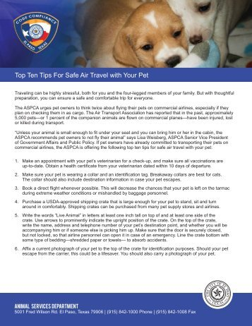 Top Ten Tips For Safe Air Travel with Your Pet - City of El Paso