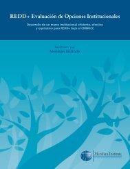 View Publication - UNDPCC.org
