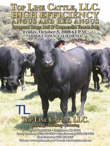 TOP LINE CATTLE, LLC. - Angus Journal