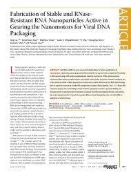 Fabrication of Stable and RNase-Resistant RNA Nanoparticles ...