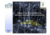 Effect of low dose radiation on neuronal maturation and ... - SCK•CEN