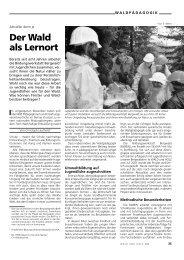 Ähnlicher Artikel - Waldwissen.net