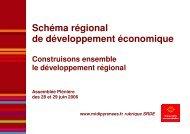 Schéma régional de développement économique - Région Midi ...
