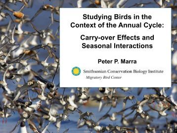 Studying Birds in the Context of the Annual Cycle: Carry-over Effects ...