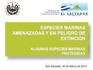 Descargue la presenteción de especies marinas amenazadas y en ...