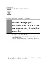 Intrinsic and synaptic mechanisms of cortical active states ...