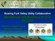 Roaring Fork Valley Utility Collaborative Jeff Rice, Utilities Energy ...