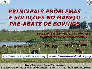 Huertas_Principais problemas e soluções no manejo pré-abate de ...