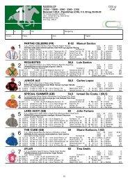 HVIT/blå seler;røde sømmer;blå/rød. Stall NOR og Lagulise Racing