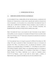 Borrador estudio técnico RUC - Universidad del Cauca