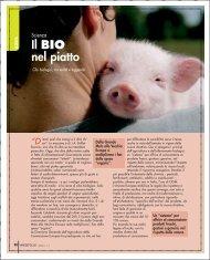 Scienza pag 38_39.pdf - Varesefocus