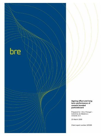 Ageing effect and long term performance of cement ... - Brico Markt