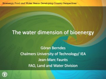 Göran Berndes International Energy Agency (IEA) - The Water ...