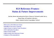 IGS Reference Frames: Status & Future Improvements