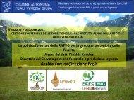 Rinaldo Comino - Parco Naturale delle Prealpi Giulie