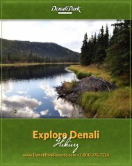 Explore Denali Hiking - Denali Park Resorts