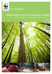 Illegal wood for the European market - WWF UE 2008