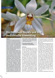 Die Orchideen Nepals und ihre medizinische Anwendung