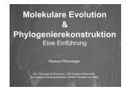 Molekulare Evolution & Phylogenierekonstruktion - Goethe-Universität