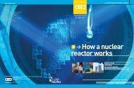 CEA - How a nuclear reactor work