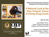 dependency drug courts - Pal-Tech